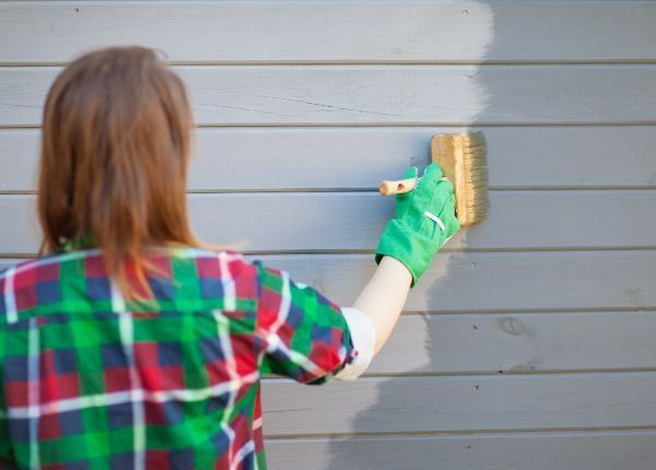 Should I paint or clad, or can I paint my cladding?