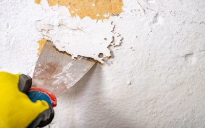 Panache Painting Prepare Your Sydney House for Exterior Painting 03 400x250 - Blog