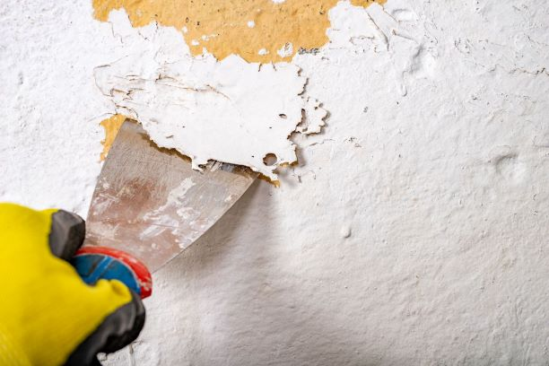 5 Things You Can Do to Prepare Your Sydney House for Exterior Painting